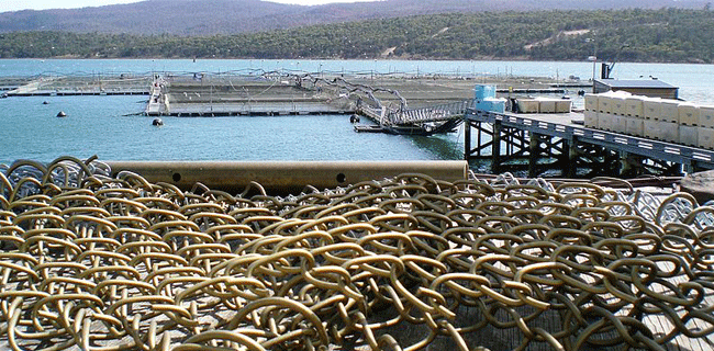 copper nets used for fishing