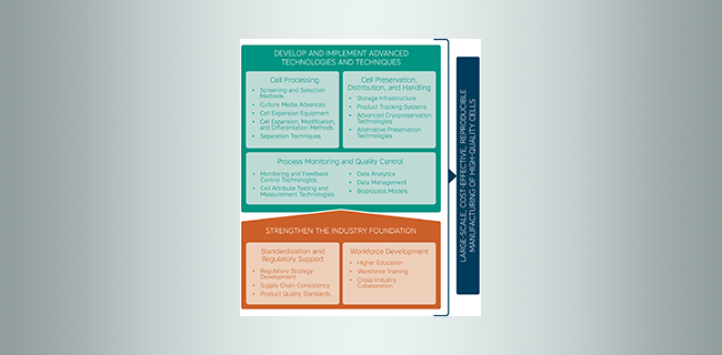 National Cell Manufacturing Roadmap infographic